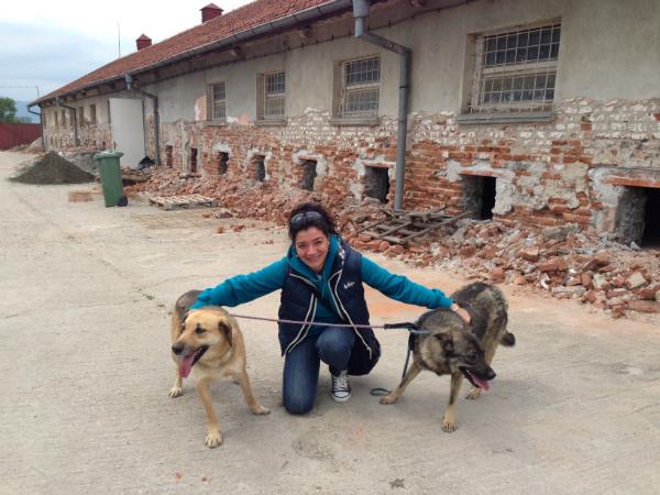 Animal Rescue_Sofia